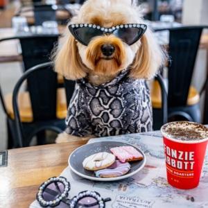 brisbane dog friendly cafe